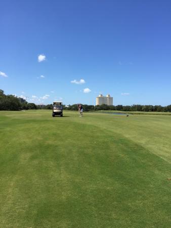 Raptor Bay Golf Club: photo1.jpg
