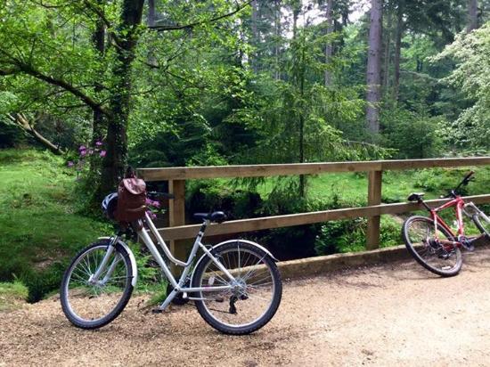 Kingfisher Retreat: Bike riding