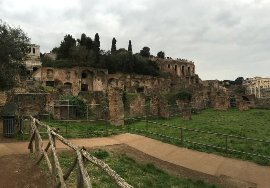 Roman Forum: Looking Up At Old Roman Apartments / Shops