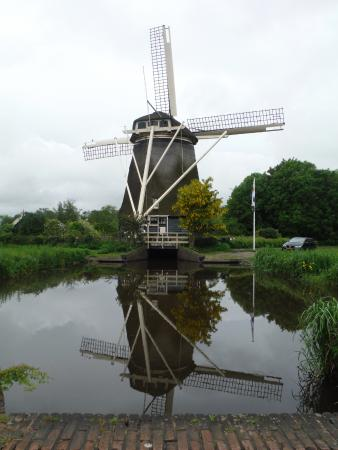 Orange Adventures : Picture from our Windmill Tour with Rolf. Very picturesque.