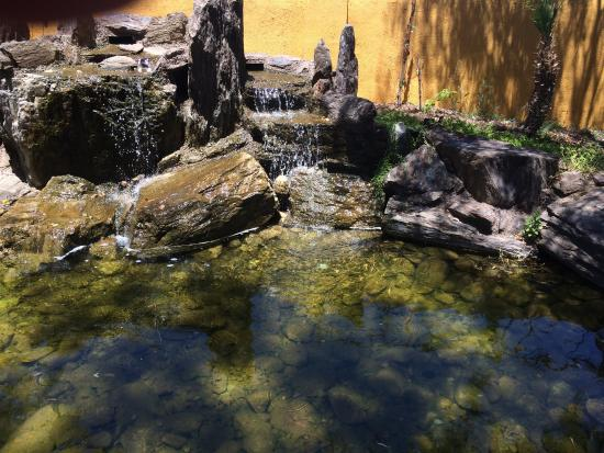 El Encanto: The waterfall located on the back patio