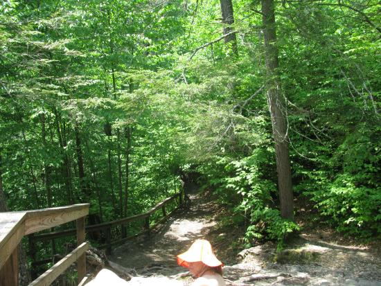 Dingmans Ferry, PA: The last part right before you get to the top