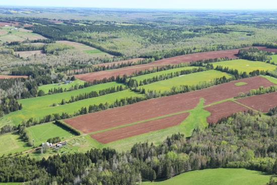 Hunter River, Canada: View from the balloon ride