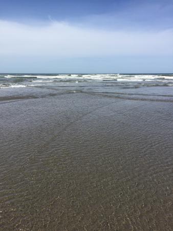 Ocean Park, WA: photo2.jpg