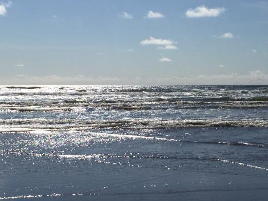 Ocean Park, WA: photo3.jpg