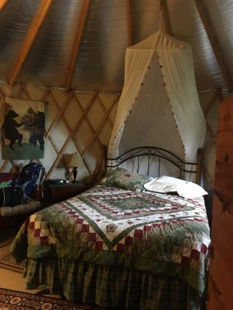 Cedar House Inn & Yurts: photo5.jpg