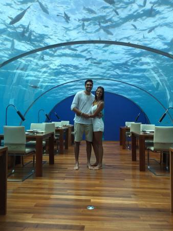Ithaa undersea restaurant rangali island fotos n mero for Viajes rangali opiniones
