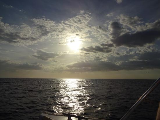 ปลายาเฮอร์โมซา, คอสตาริกา: great sunset from marlin del rey catamara tour (book through Tico Tours)