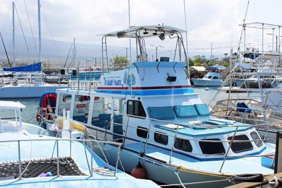 Holualoa, HI: Captain Dan' Boat.