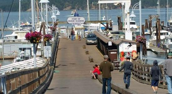 Wharfside Bed and Breakfast Aboard the Slowseason: Friday Harbor Marina