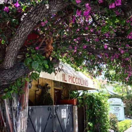 Beverly Hills, Kalifornien: The wonderfully secluded Il Piccolino Italian Restaurant is a favorite for celebrities.