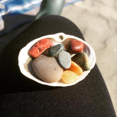 โอเชียนชอส์, วอชิงตัน: My little collection from this cute beach.
