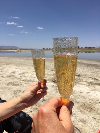 Willcox Playa Wildlife Area: And you can poor ginger ale in champagne glasses and make believe