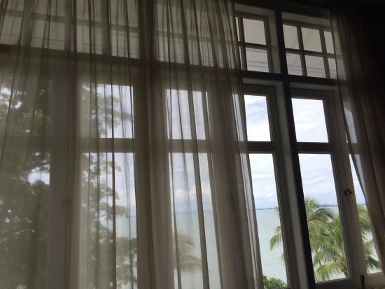房间窗很高,可惜不是落地的