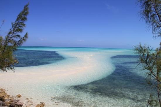 Фотография Andros Beach Club
