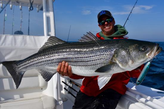 Add a caption picture of reel deal fishing charters for Striper fishing cape cod