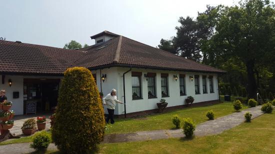 Haldon Forest Diner