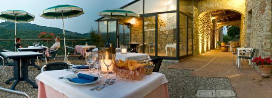 Hotel Podere Le Noci: terrazza