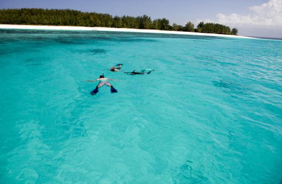 Matemwe Lodge, Asilia Africa : Snorkeling