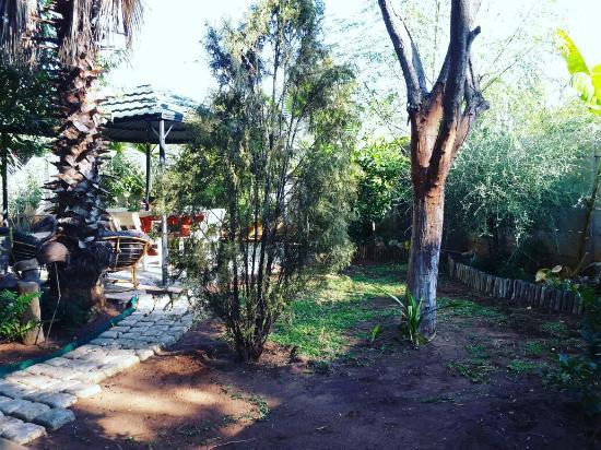 Tsumeb, Namibia: Garden