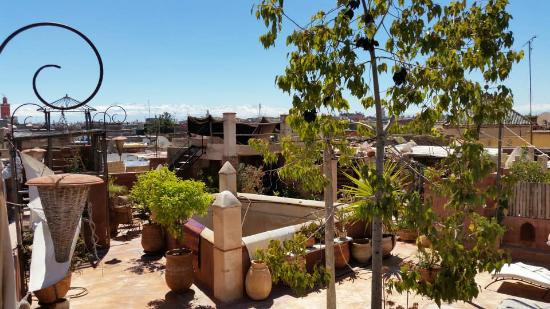 Riad les Inseparables: roof top