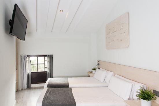 Hotel Lotelito: Habitación twin