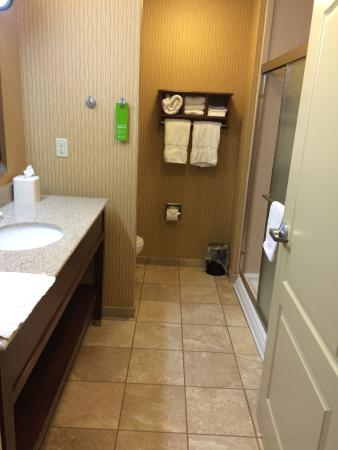 Hampton Inn Matamoras : Very clean and well equipped bathroom. Spacious!