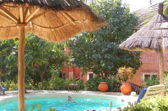 vue sur Pirogues: Piscine et jardin