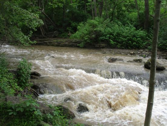 Channing H. Philbrick Park: Channing Philbrick Park - whitewater in stream