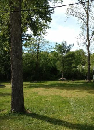 Eby's Pines Campground Picture