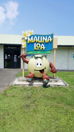 Keaau, Hawaï : Mauna Loa Sign.
