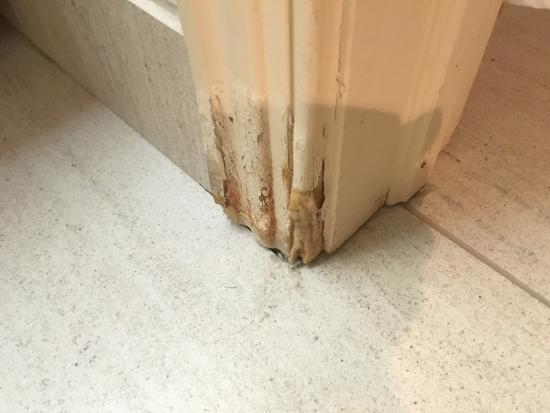 Homewood Suites by Hilton Fort Myers: Rotten door frame