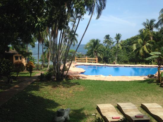 Hotel Los Mangos Resmi