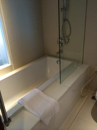 Dangerous access to bathtub/shower. Mind your step!!! - Picture of ...