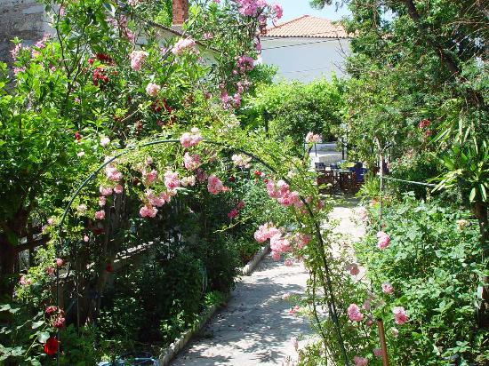 Kalamos, Griekenland: deon's magnificent garden...!