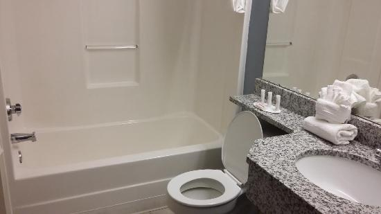 Microtel Inn & Suites Greenville: Clean bathroom