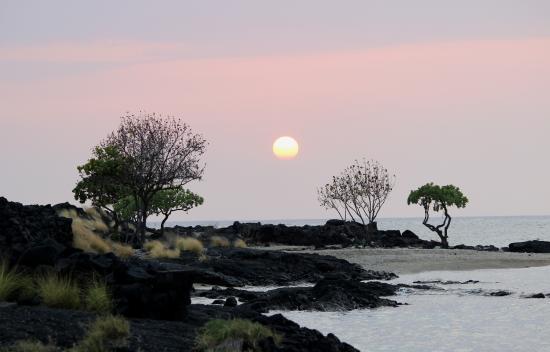 Honokohau Marina & Small Boat Harbor: Beach Sunset.
