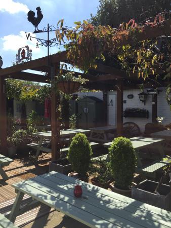 Hamble, UK: Sunny back garden