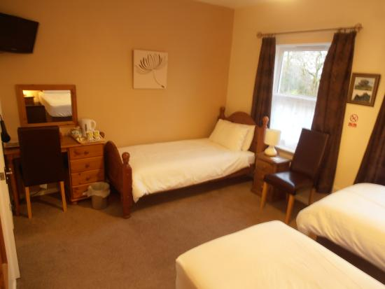 Meadowlea Guest House: Triple Room/ KingDouble