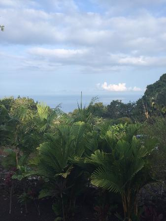 Foto de Holualoa
