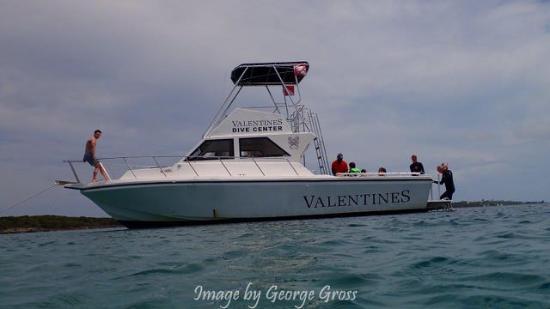 valentines dive center boat
