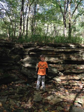 Jellystone Park at Lake Monroe: Hiking trails