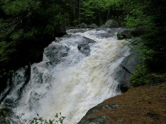 Jackman, ME: Moose River