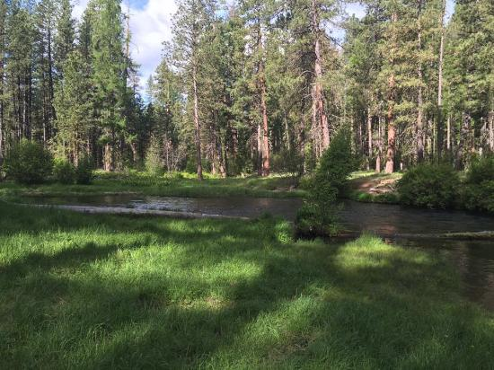 Metolious River Lodges : Outside the cabin