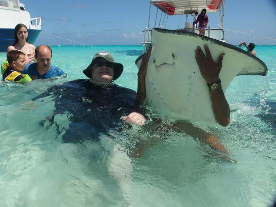 Cayman Ocean Adventures Stingray City & Snorkeling Tour: Stingray City