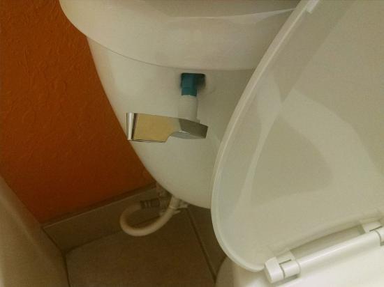Microtel Inn & Suites by Wyndham Princeton: Toilet handle