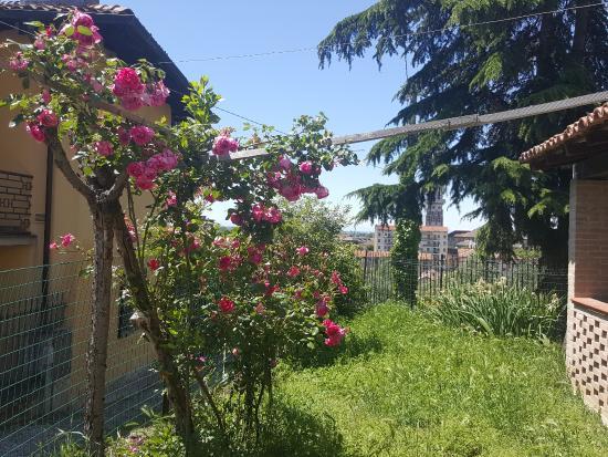 Ristorante Camere Villa dei Tigli: giardino