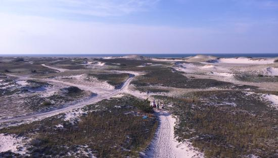 Long Pasture Wildlife Sanctuary : view from lighthouse
