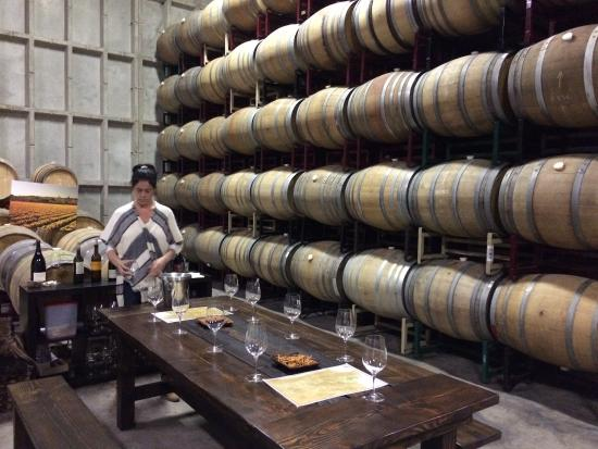 Sustainable Vine Wine Tours : Tasting at Dragonette