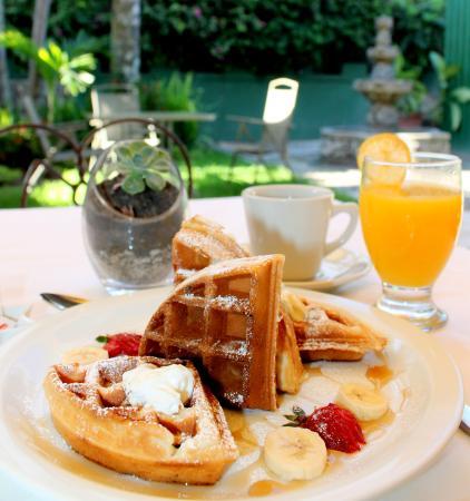 Hotel Las Magnolias : Desayuno de Waffles Gratis